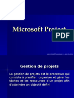 Info Ms Project