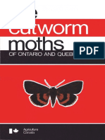 cutworm_moths_of_ontario_and_quebec.pdf