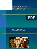 Introduccion Anatomia
