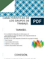 Características de Los Grupos de Trabajo