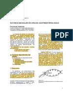 Suturas Manuales en Cirugia Digestiva - SACD