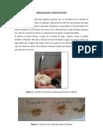 p8- Contenido de Gluten