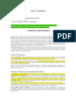 Bizu Vf Direito TIBA.docx