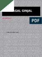 Diet Gagal Ginjal(1)