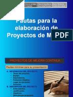 Pautas Para La Elaboración de PMC