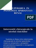 Recup in Patologia AP Renal