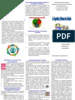 TRIPTICO SEGURIDAD Y DEFENSA DE LA NACION.pdf