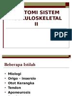 Anatomi Sistem Muskuloskeletal II - Copy - Copy