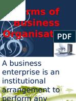 Business organization analysis