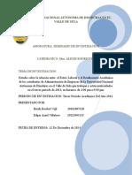 Informe Final de Seminario de Investigaciones Sin Marco Teorico