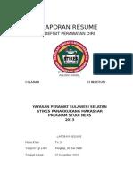 Laporan Resume Dpd
