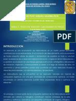 descripcion y volumen de los reservorios.pdf
