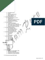 PGI PG Solved Paper 2001
