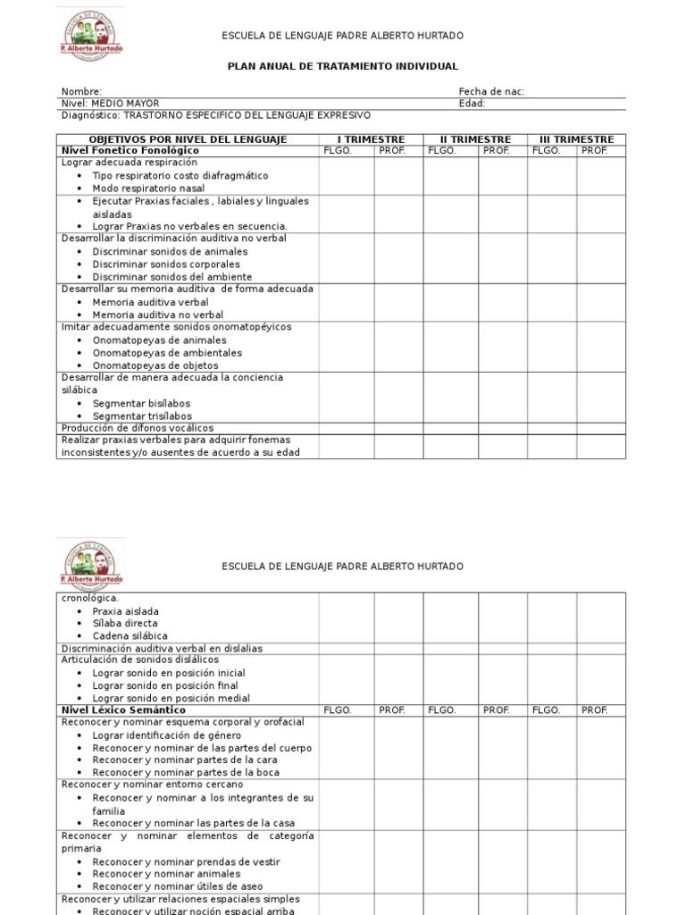Plan Anual de Tratamiento Individual Expresivo Medio Menor