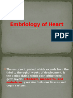 Embriology of Heart