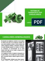 Cap N° 4- Transporte Vertical-CANGILONES.pdf