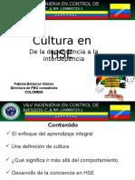 FABIOLA BETANCUR Cultura de HSE de La Dependencia a La Interdep Julio 2012