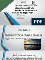 Producción Industrial de Bioetanol a Partir de Residuos de la Producción de Ate de Tejocote