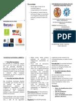 triptico_2017-1.pdf