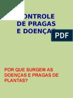 5pragas-140423093643-phpapp02