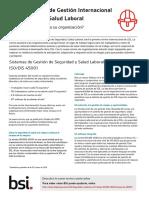 ISO DIS 45001_Resumen ejecutivo_Feb 2016_ES.pdf