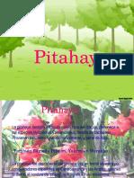 Presentación1,1,1.pptx
