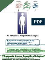 Mecanismos Efetores Da Resposta Imune Imunologia Básica