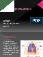 5. Sistema Circulatorio