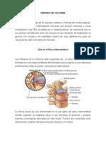 HERNIAS DE COLUMNA.docx