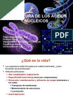 1.Estructura de Los Acidos Nucleicos 1.2012