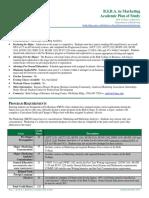 marketing analytics program