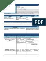 Formato de Plan Analitico