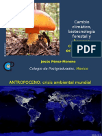CD Altamirano