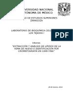 Extracción y Análisis de Lípidos de La Yema de Huevo e Identificación Por Cromatografía en Capa Fina