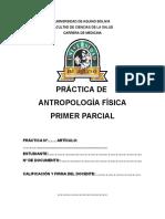 Antropologia - Formato Practica Primer Parcial