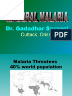 Cerebral Malaria New