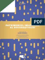 Analiza Patrimoniu Imaterial Ioana Popescu Web