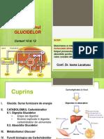 C12_13_Metabolism_GLUCIDE_IPA_2016 (1).pdf