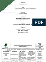 caracterizacion de procesos.doc