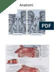 Anatomi dan histologi.ppt
