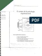 Cap-1-El-campo-de-la-psicología-organizacional.pdf
