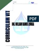 Curriculum Wrz Consultoria 2015 (1) (1)