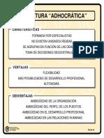 estructura adhocratica