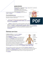 Los 11 sistemas del cuerpo Humano