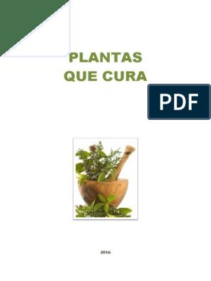 CURAM BAIXAR O PLANTAS LIVRO AS