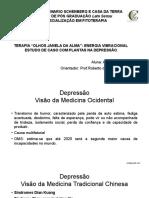 Terapia Olhos Janela Da Alma Energia Vibracional Estudo de Caso Com Plantas Na Depressão
