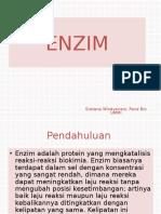 Enzim. Biokikia 2 Ppt