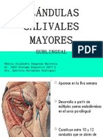 GLÁNDULAS SALIVALES MAYORES.pptx