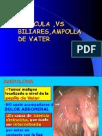 VESICULA VIAS BILIARES AMPOLLA DE VATER.ppt