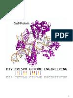 CRISPR Bacterial Guide